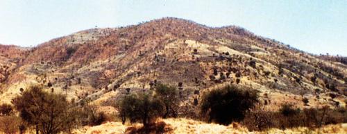 Gwoza Hills,Gwoza