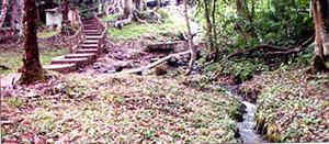Source of Ikogosi Springs