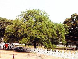 European Cemetery, Lokoja