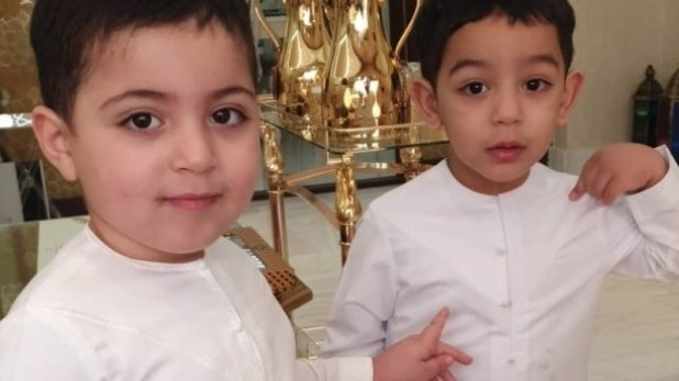 2-year-old twins drown in neighbour