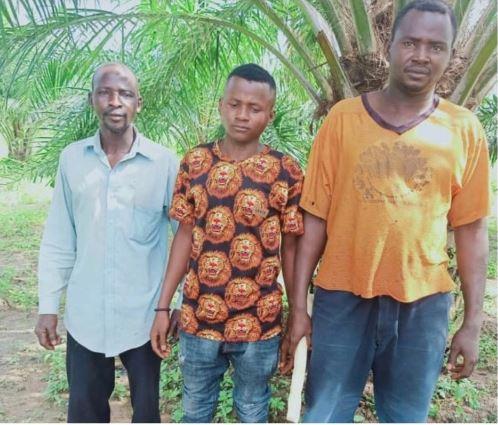 Troops Kill Bandit, Rescue 3 Farmers In Kaduna