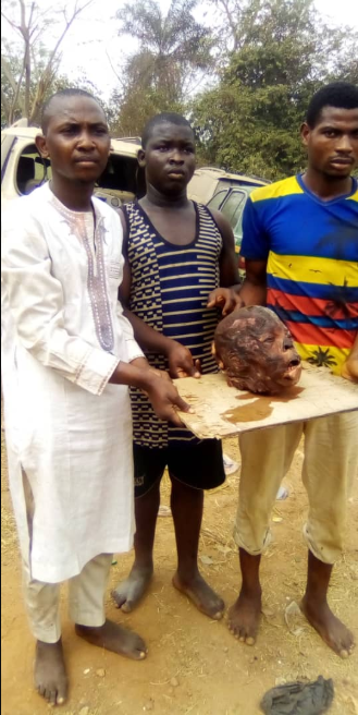 Alfa and his accomplices arrested for stealing the head of a corpse for money rituals (graphic photos)