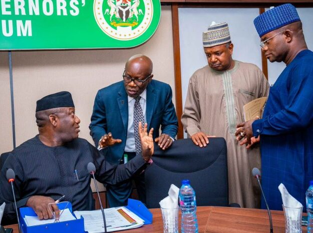 Nigerian governors speak on looted COVID-19 palliatives