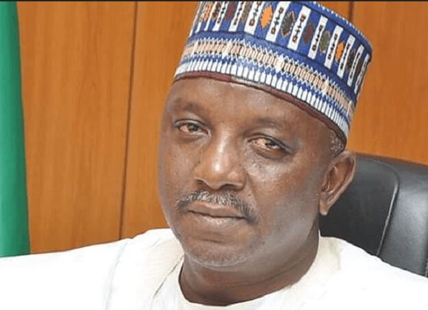 Senators Uncover '20 Proposed Electricity Projects' In Minister of Power, Mamman Saleh's LGA