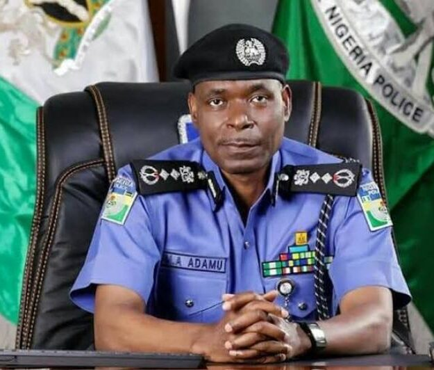82,779 junior police officers promoted in Nigeria