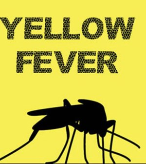 Yellow Fever Claims 25 Lives in Benue