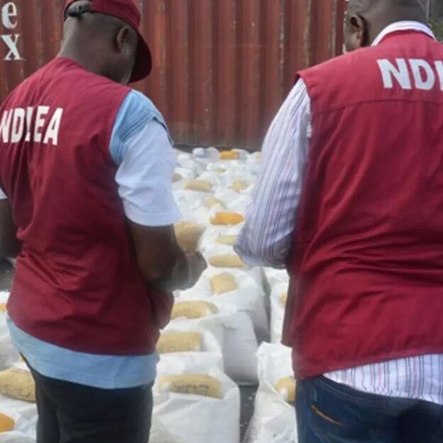 NDLEA Intercepted 2.3 Tonnes Of Indian Hemp In Yobe, Arrested 112 Drug Offenders In 2020