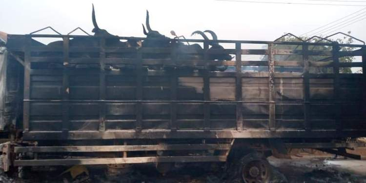 Truck Conveying Cows Set Ablaze By Angry Mob For Crushing Boy To Death In Oyo 1