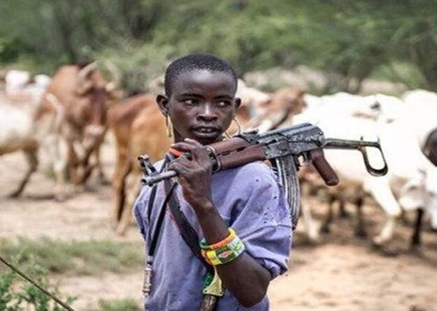 Afenifere replies Fulani herdsmen over threat to withdraw cattles from South