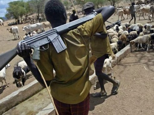 Edo govt. becomes tough on killer herdsmen, bans unregistered cattle markets