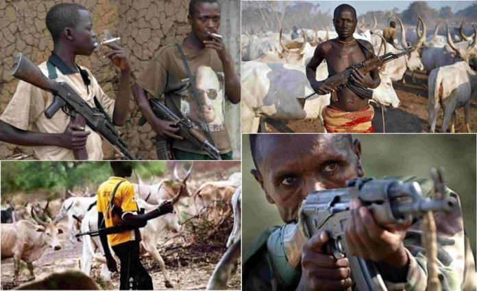 Fulani Banditry: Flicker Of Light From Northern Elders