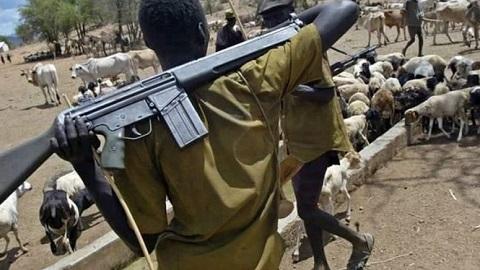 Fulani Herdsmen Plotting to Islamize Southern Nigeria – Bishop Cries Out