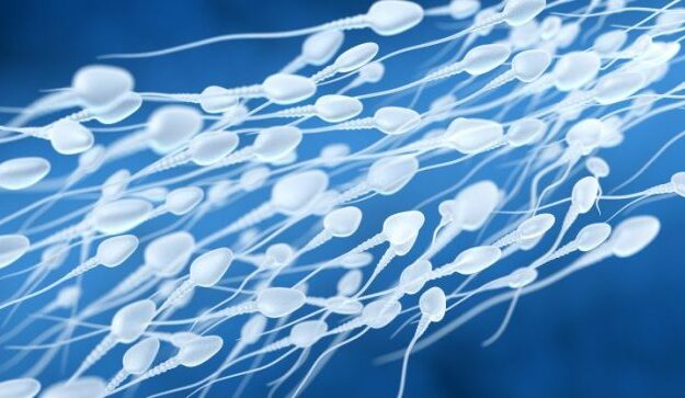 Male infertility threatening 'future of human race,' says author of new book