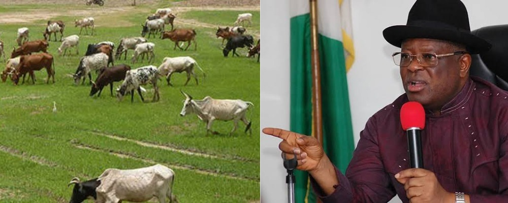 South East Governors Places Ban On Open Grazing And Movement Of Cows By Foot 1