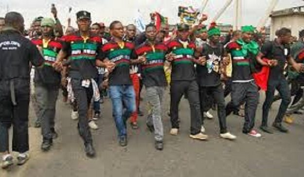 We're miles ahead of you, IPOB tells Army
