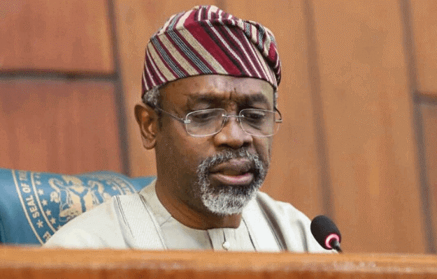 After deputy speaker's gaffe, Reps accept petition by Nigerian diaspora group