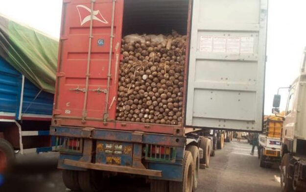 Blockade on food supplies can't cower us, says Igbo group
