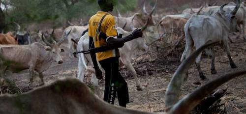 Bloodbath continues in Ebonyi as Fulani herdsmen kill 25 villagers