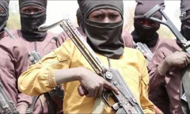 Boko Haram: It Is Time for Buhari to Engage Mercenaries – Borno Elder