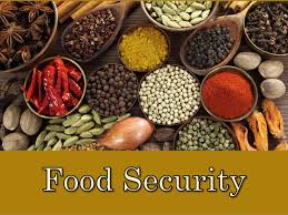Food security: Expert seeks conservation, utilisation of genetic resources in Nigeria