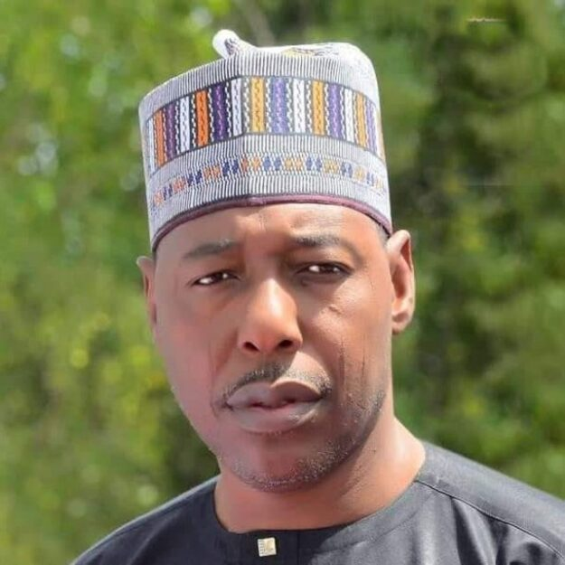 How north decided to stop Jonathan in 2015 – Gov Zulum