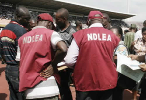 How The NDLEA Seized N60 Billion Worth Of Narcotic Drugs Within 6 Weeks — Marwa Speaks