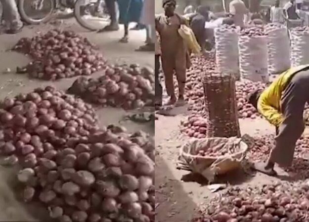 Kano Traders Laments As Onion Bag Sold In South For N35k Crashes To N7k In The North