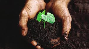 Minister wants donor agencies' support on digital soil fertility maps