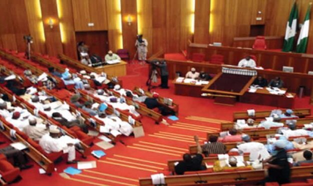 Senate confirms CDS, Service Chiefs