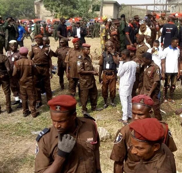 Amotekun Arrests Herders, 250 Cows Over 300-hectare Farm Destruction