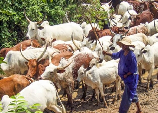 How suspected fulani herdsmen kill 55 people in Ogun community