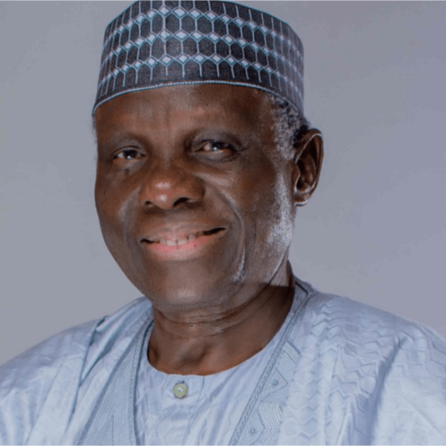 Jerry Gana, 3 other old political warhorses return to PDP