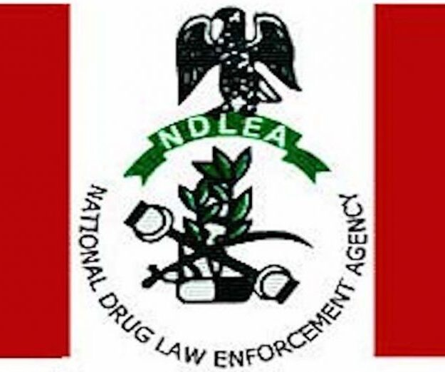 NDLEA busts drug syndicate, arrests 2 undergraduates