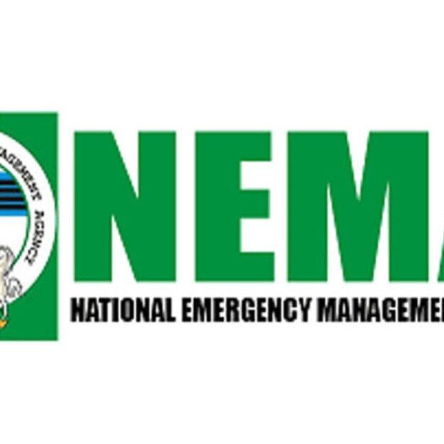 NEMA distributes relief materials to Gaya & Ajingi flood victims of Kano state