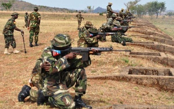 Nigerian Army inflicts high casualty on Boko Haram in Borno