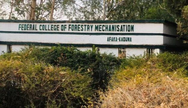 Troop rescues five kidnapped Kaduna college students