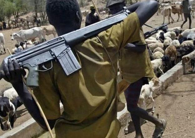 Why fulani herders resort to crime – Miyetti Allah