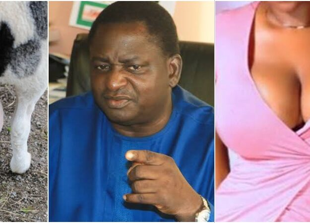 "Buhari's Aide, Femi Adesina Describes Nigeria As ""Testicles Of A Ram Or Woman's Breasts"""