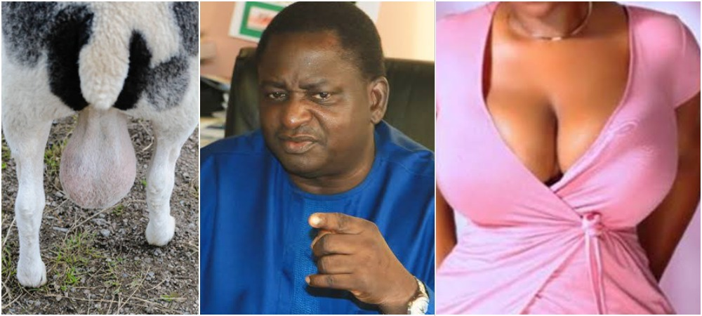 """Buhari's Aide, Femi Adesina Describes Nigeria As """"Testicles Of A Ram Or Woman's Breasts"""" 1"""
