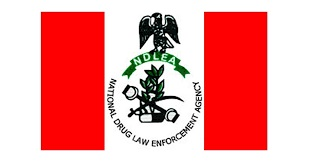 Gunmen Set NDLEA Office Ablaze In Abia