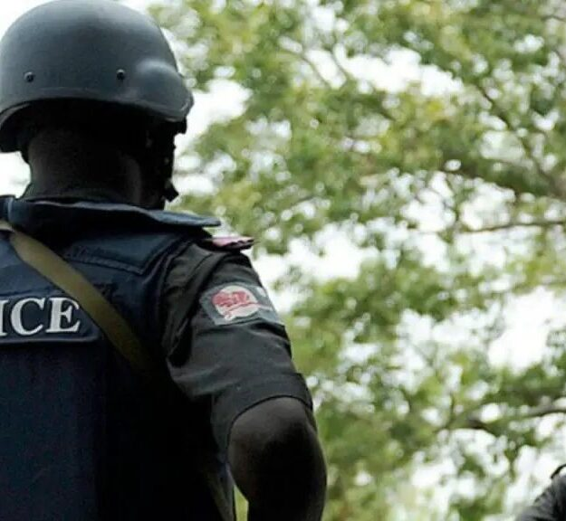 Policemen Arrest 16 Suspected Cultists, Recover Firearms, Ammunition In Enugu