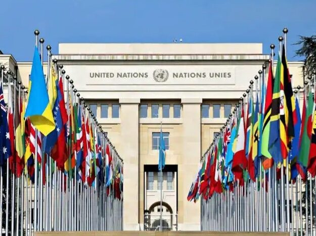 Activities of armed groups threatening Central Africa's fragile stability – UN