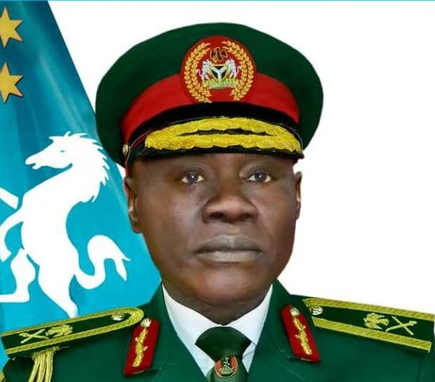 Army appoints Musa head of Operation Hadin Kai, top officers shuffled