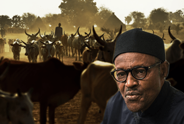 Insecurity remains a snag, but Buhari has done well on infrastructure – By Fredrick Nwabufo