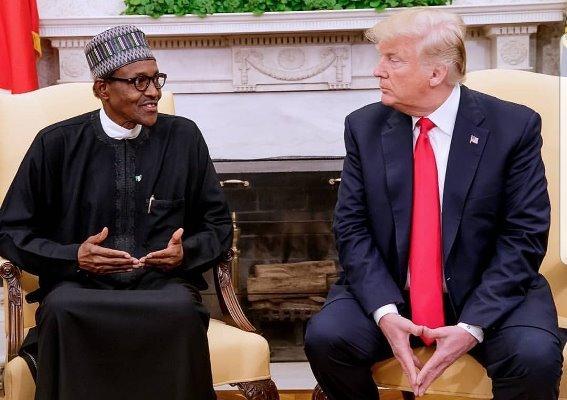 JUST IN: Trump lauds Buhari for Twitter ban