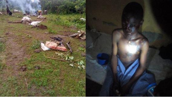 Panic As Thunderstrike Kills Seven Cows, Injures Two Herders In Kwara