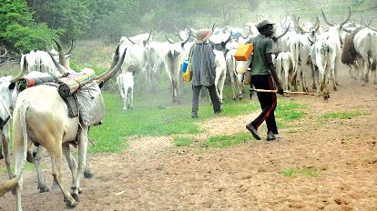 Suspected Herdsmen Sent Packing From Babanla, Kwara