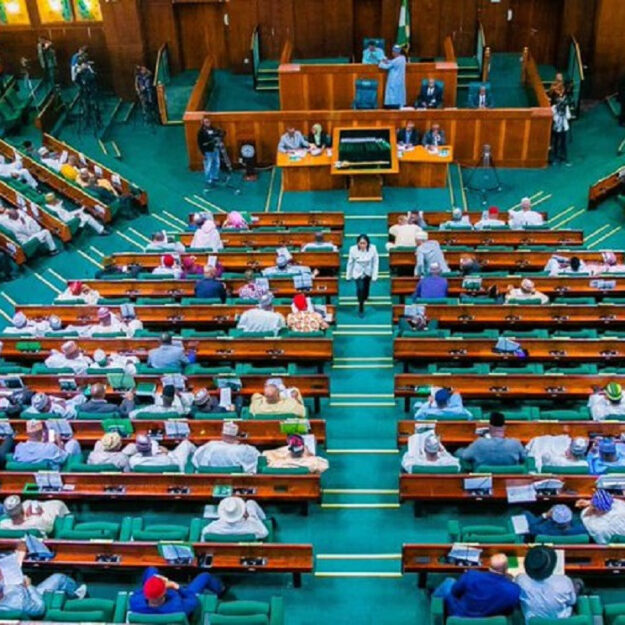 Twitter Ban: Reps divided as PDP caucus stages walk out