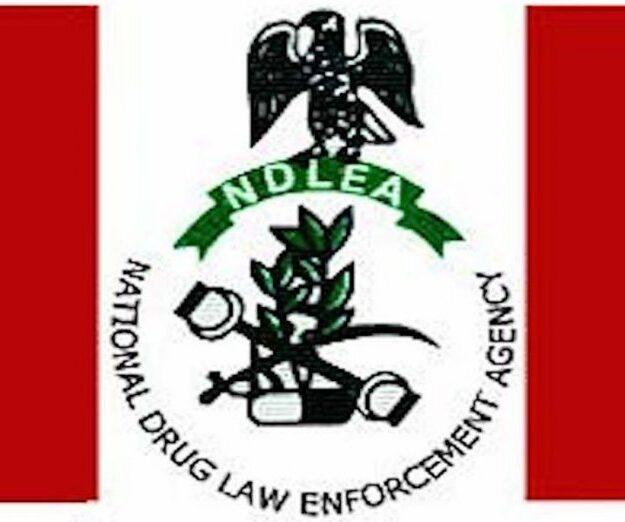 NDLEA arrests woman for drug trafficking in Benue