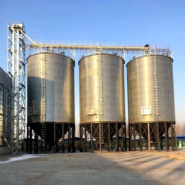 Nigeria needs additional silos to prevent food scarcity – Ex- commissioner